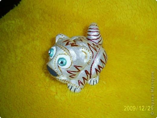 Слышала, что 2010 год - год белого металлического тигра, вот мой символ года. фото 6
