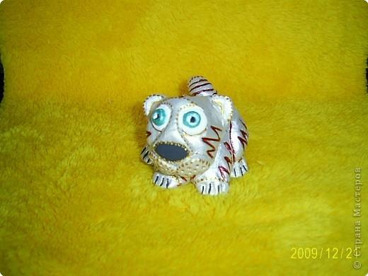 Слышала, что 2010 год - год белого металлического тигра, вот мой символ года. фото 1