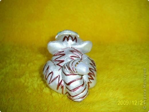 Слышала, что 2010 год - год белого металлического тигра, вот мой символ года. фото 5