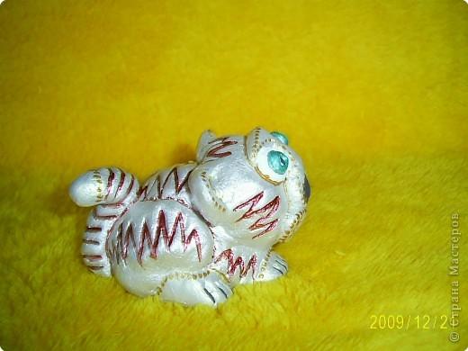 Слышала, что 2010 год - год белого металлического тигра, вот мой символ года. фото 4