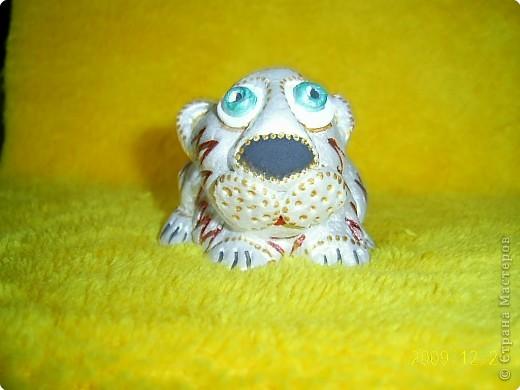 Слышала, что 2010 год - год белого металлического тигра, вот мой символ года. фото 3