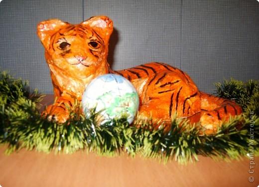 Тигр и  земной шар.