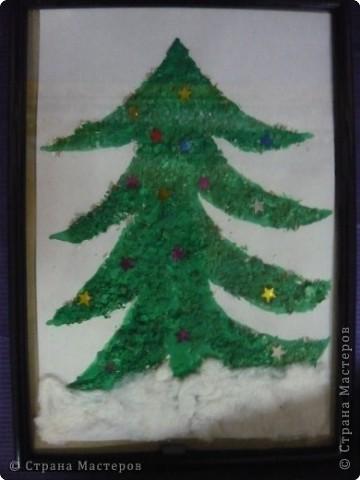 Что за дерево такое?