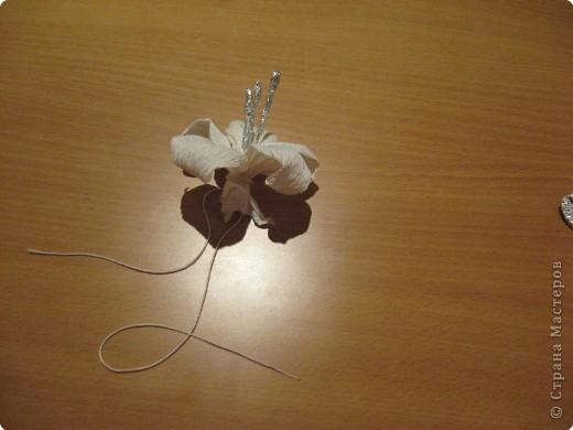 Зимние орхидеи в коробочке. фото 9