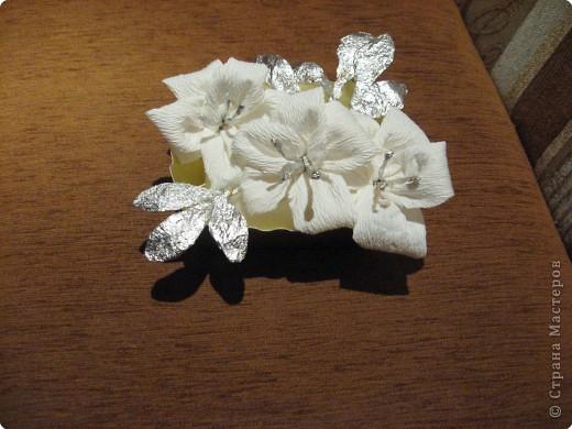 Зимние орхидеи в коробочке. фото 1