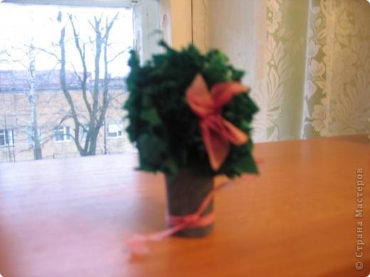Моё знакомство с сайтом Страна Мастеров началось чуть больше года назад с посещения галереи работ Ольги Кирьяновой.Меня всегда привлекала техника торцевание,а вдохновила на работу  Весёлая мозаика Ольги в этой технике. Первый мой цветок,теперь он  кажется несколько примитивным.С него -то всё и началось. фото 2