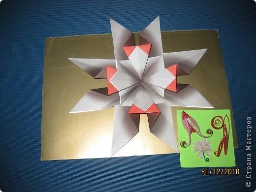 А  я  похожа  на  звезду ? фото 5