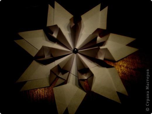 Моя звезда.  Сириус.  Люди обратили на эту звезду внимание еще в   древности. Жрецы Древнего Египта  использовали  наблюдение за звездой для составления календаря земледелия.     фото 6