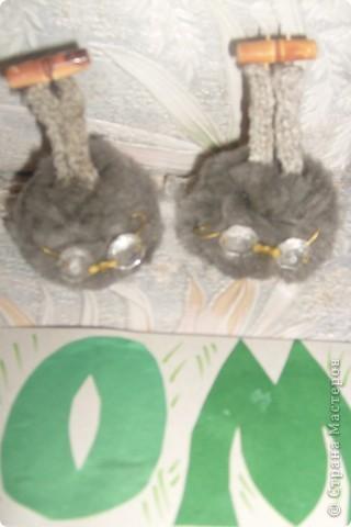 Шарончики прилетели в гости к нам. фото 1