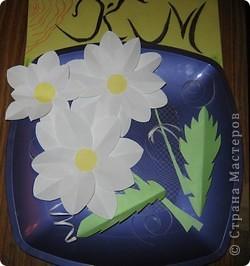 Вот и прошли первые весенние праздники. Я подарила своей маме маленькие ромашки, которые для меня являются не только цветами, но и маленькими солнышками. фото 2