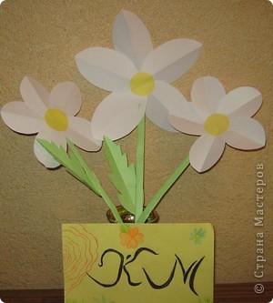 Вот и прошли первые весенние праздники. Я подарила своей маме маленькие ромашки, которые для меня являются не только цветами, но и маленькими солнышками. фото 3
