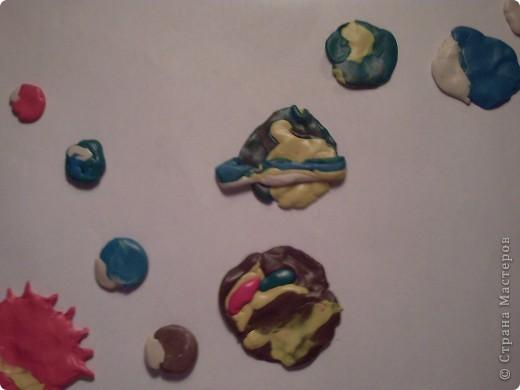 Моя яблонька будущего в лучах солнышка и подсолнышка. фото 2