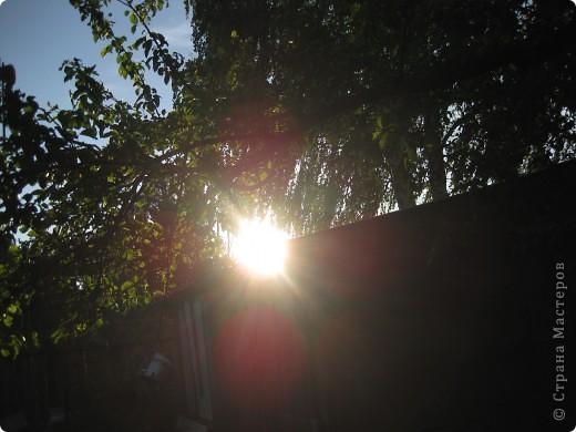 Волшебное  солнышко. фото 11