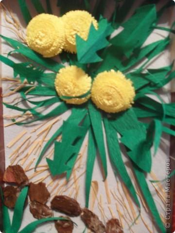 Одуванчики - маленькие солнышки фото 3