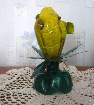 мой тюльпан фото 3