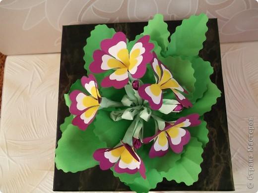 В деревне у бабушки расцвели эти красивые цветочки, которые вдохновили меня сделать эту работу. Называются они примула. Очень жаль, что не было с собой фотоаппарата, я их сфотографировала на свой телефон. Работу мне помогала делать моя мама Татьяна Викторовна Иванова. фото 3