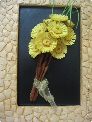 Весенний букетик мать-и-мачехи. Цветочки по-весне расцветают повсюду и радуют нас, словно маленькие солнышки. фото 8
