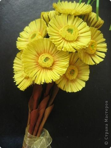Весенний букетик мать-и-мачехи. Цветочки по-весне расцветают повсюду и радуют нас, словно маленькие солнышки. фото 3