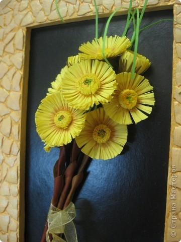 Весенний букетик мать-и-мачехи. Цветочки по-весне расцветают повсюду и радуют нас, словно маленькие солнышки. фото 5