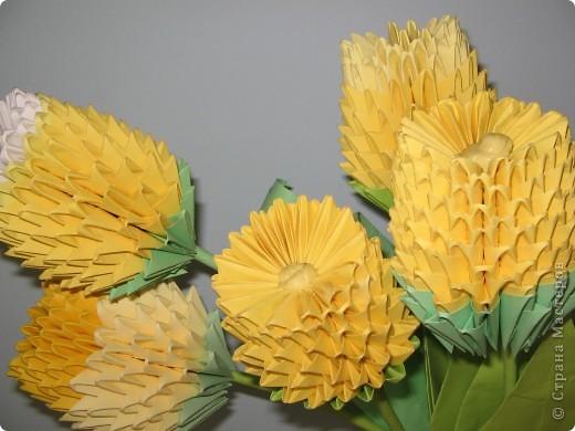 Вот такие жёлтые тюльпаны, которые покорили нас красотой и изяществом. фото 8