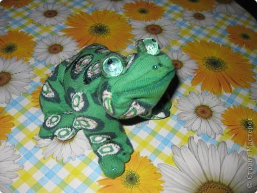 Слышали ли вы как поют  весной лягушки?вот одна из них! фото 6