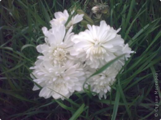"""""""Цветы Весны!"""" Весенняя композиция из бросового материала, с использованием различных техник: папьемаше, квилинг, живопись. фото 4"""
