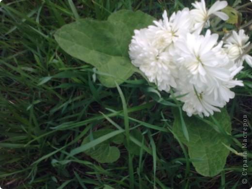"""""""Цветы Весны!"""" Весенняя композиция из бросового материала, с использованием различных техник: папьемаше, квилинг, живопись. фото 5"""