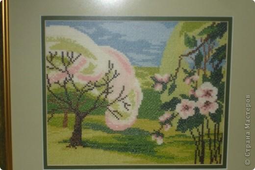 Цветущий сад  фото 1