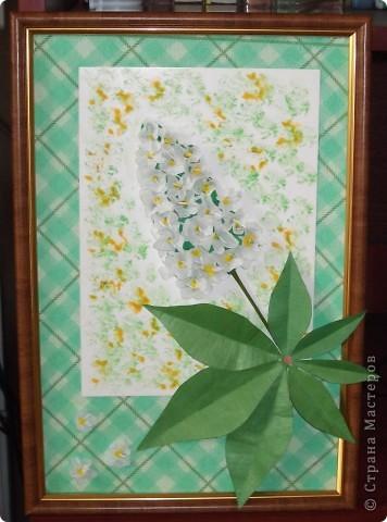 На этой картине я разместил цветок каштана - удивительного дерева, которое очень красиво  цветет весной. фото 1