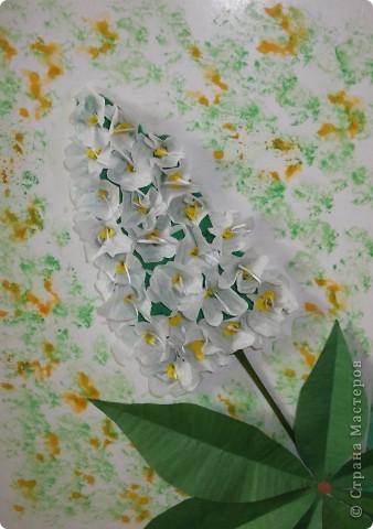 На этой картине я разместил цветок каштана - удивительного дерева, которое очень красиво  цветет весной. фото 2