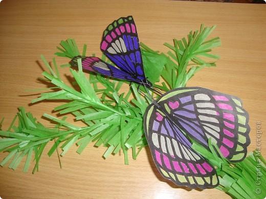 Такую бабочку в технике витраж Оля сделала по фотографии. Только цвета пришлось изменить, т.к. исходили из имеющегося набора бумаги для витражей. На окне работа смотрится красиво. фото 3