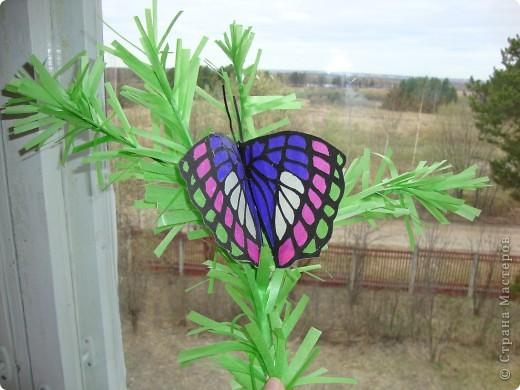 Такую бабочку в технике витраж Оля сделала по фотографии. Только цвета пришлось изменить, т.к. исходили из имеющегося набора бумаги для витражей. На окне работа смотрится красиво. фото 2