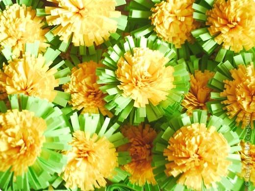 Веночек из одуванчиков мне очень захотелось сделать!!!! Раньше, в детстве, у нас были целые поляны. А сейчас - лужайки. Маленькие островки цветочков - солнышек. Мало их стало! фото 6
