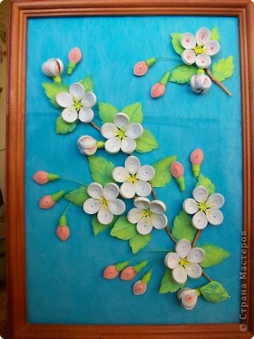 Яблоневая веточка фото 1