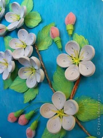 Яблоневая веточка фото 2