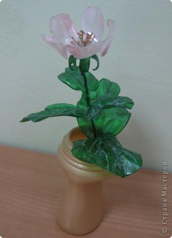 """Чтобы показать свое творение """"во всей красе"""", я разместила свою веточку рядом с настоящими цветами.Надеюсь, вы нашли мой цветок? фото 4"""