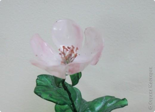 """Чтобы показать свое творение """"во всей красе"""", я разместила свою веточку рядом с настоящими цветами.Надеюсь, вы нашли мой цветок? фото 5"""