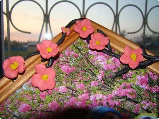 Наконец то и в наш город пришла весна, распускаются первые цветочки, на березе появились листочки. фото 7