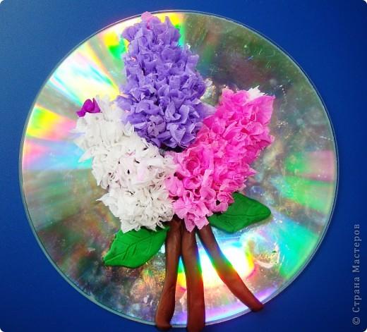 С душистой веточкой сирени Весна приходит в каждый дом  фото 1