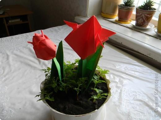А это мой цветок. Сделал я его из бумаги и картона. фото 1