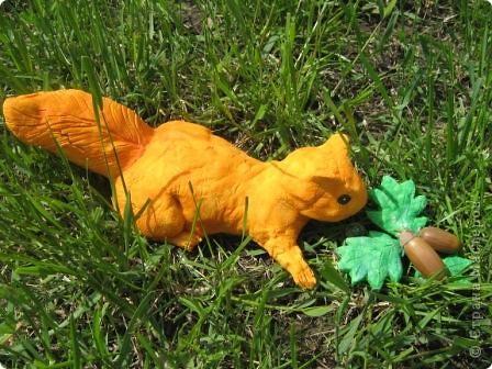 Белка в траве фото 2