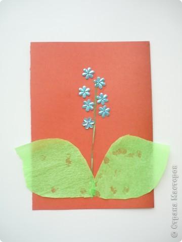 Делала доча в 2 годика, я вырезала листики и стебель, нанесла клей на картон, а доча выкладывала детали на клей.  фото 1