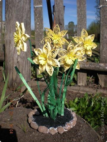 Сделать эту клумбочку меня вдохновили мои любимые цветы, которые цветут у моего дома. фото 1