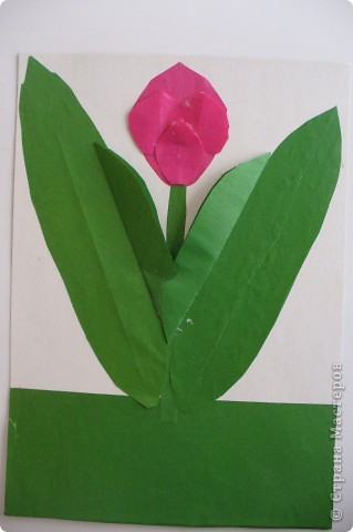 Тюльпан. фото 1