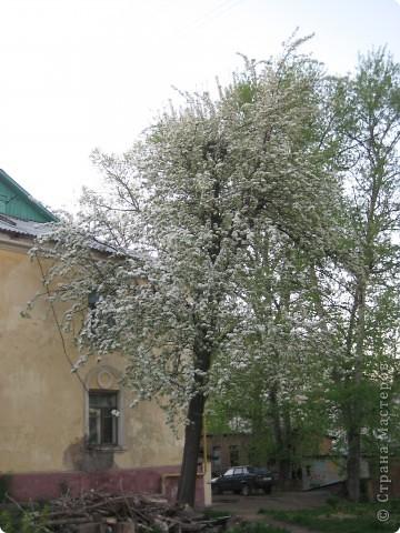Яблоня из бисера в цвету. фото 2