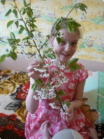 Веточка вишни. фото 6