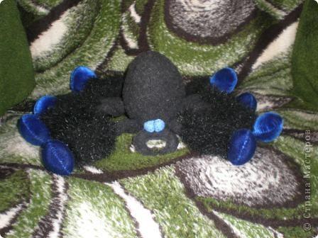 Это я - паучок, проснувшийся после зимней спячки. фото 3