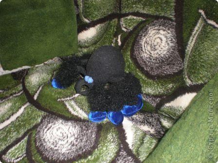 Это я - паучок, проснувшийся после зимней спячки. фото 4