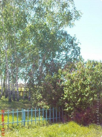 школьный двор весной фото 2