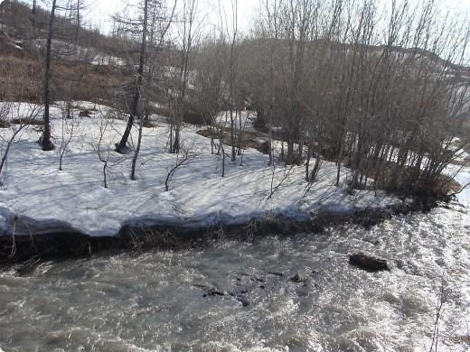Такой я увидела нашу северную природу весной. фото 2